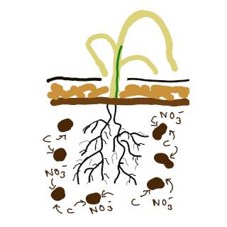 Kompostino Strohdüngungund Mulchfolien legen Stickstoff im Boden fest