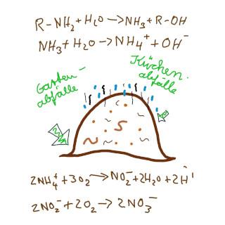 Stickstoff Kompostino